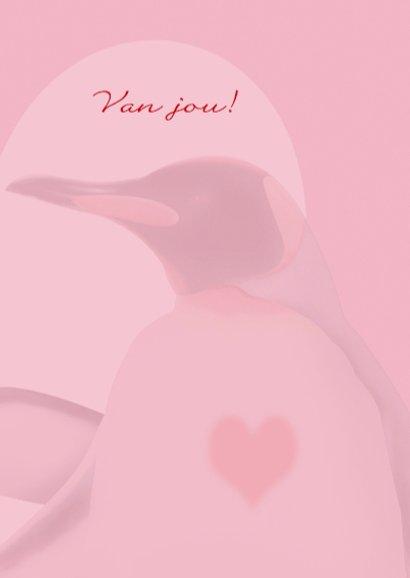 valentijn1 pinguins met groot hart 3