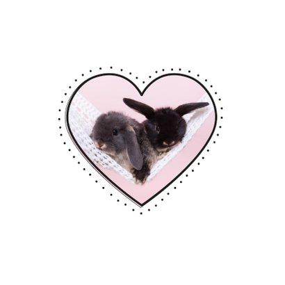 Valentijnskaart - Konijntjes in hartje 2