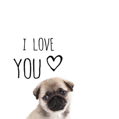 Valentijnskaart met lief hondje 2
