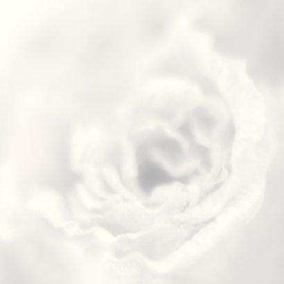 Veel geluk samen roos 2
