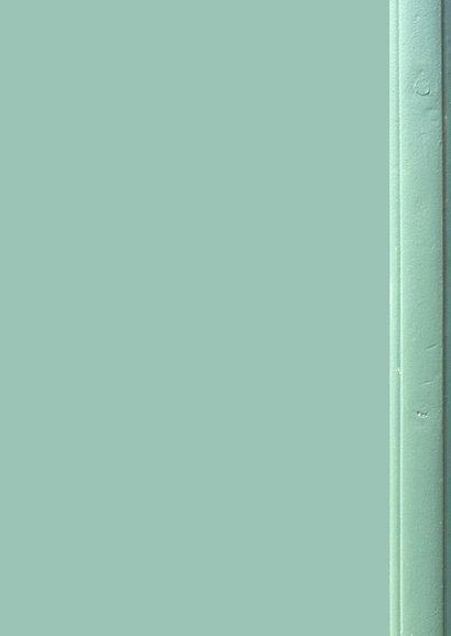 Verhuisbericht retro voordeur pastelgroen Achterkant
