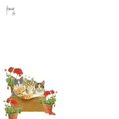 Verhuiskaart met katten in verhuisdoos 2