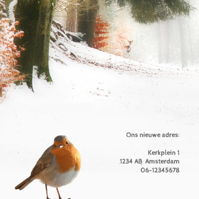 Verhuiskaart met kerstwens 2