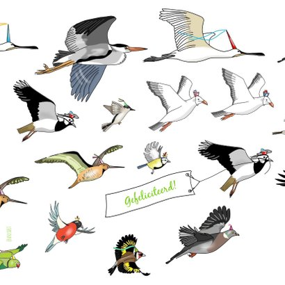 Verjaardag - allemaal vogels 2