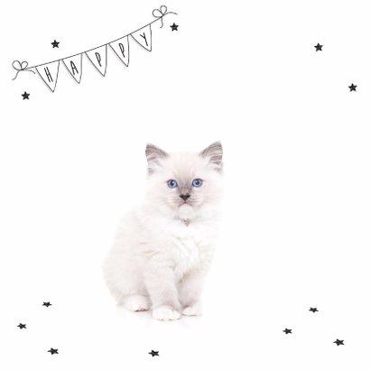 Verjaardag - Kitten Ballonen Jarig - Roze 2