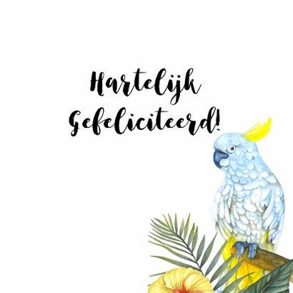 Verjaardag tropisch vogels 3