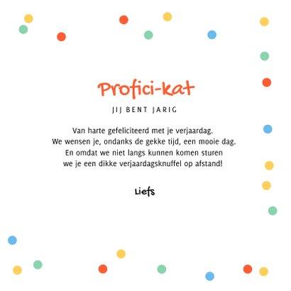 Verjaardagskaart feestelijk katten confetti proficikat 3