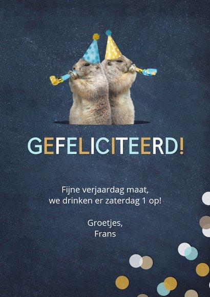 Verjaardagskaart grappige marmotten met feesthoedjes 3