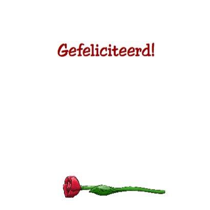 Verjaardagskaart kat met bloemen en kaartje: Van Harte... 3