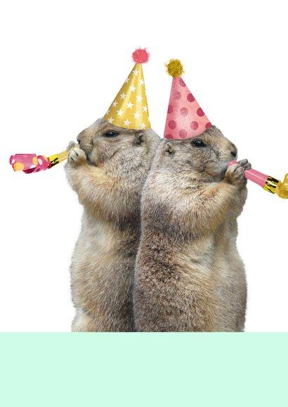 Verjaardagskaart marmot met feesthoedje en toeter 2