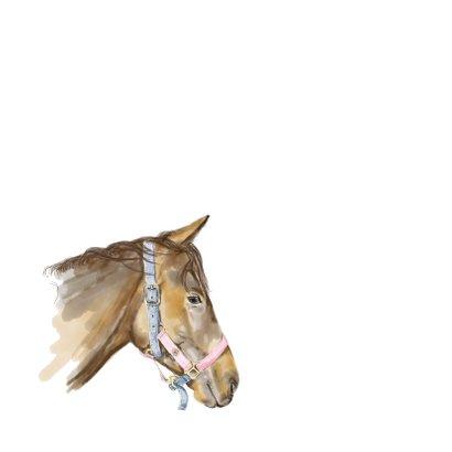Verjaardagskaart met een tekening van een paard 2