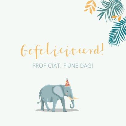 Verjaardagskaart olifant giraf zebra feestmuts 3