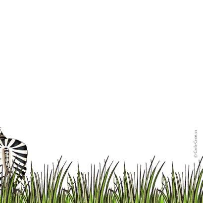 Verjaardagskaart zebra met wegwijzer 2