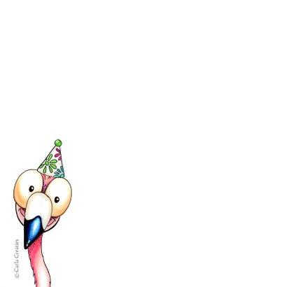 Verjaardagskaarten flamingo van harte 2