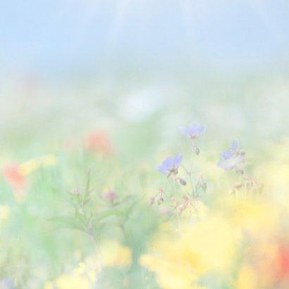 Vertel het met zomerbloemen 3