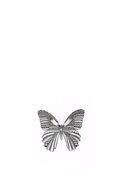 Vlinder zwart/wit Illustratie 2