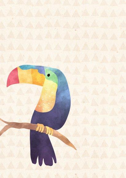 Vrolijke beterschapskaart Jungle met toekan en flamingo 2