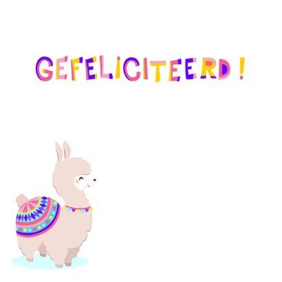 Vrolijke en kleurrijke verjaardagskaart met lieve alpaca 2