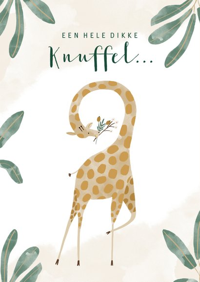 Vrolijke kinderkaart jungle met giraf en dikke knuffel 2