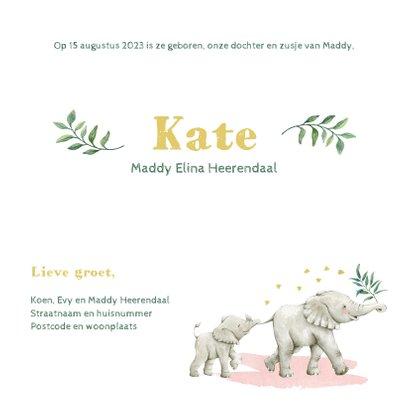 Vrolijke olifantjes op botanisch geboortekaartje zusje 3