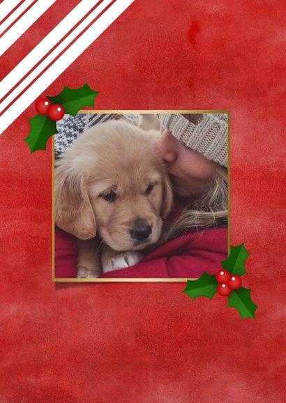 Weihnachtskarte rote & weiße Streifen, Foto und Stechpalme 2