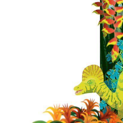 YVON dinosaurus foto jongenskaart 3
