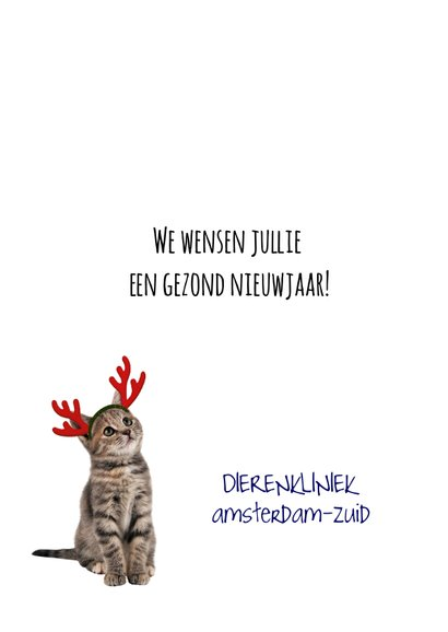 Zakelijke kerstkaart met poes en logo 3