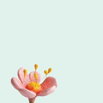 Zomaar bloem en bijtjes 3