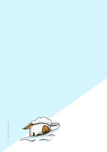 Zomaar kaarten Reuze sneeuwbal 2