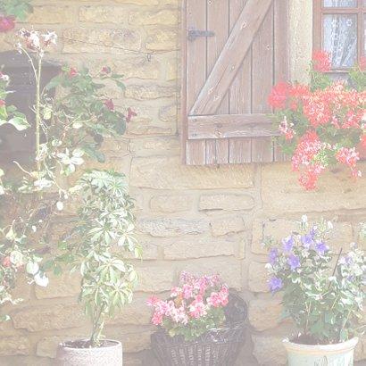 Zomaar landelijke bloemen 2