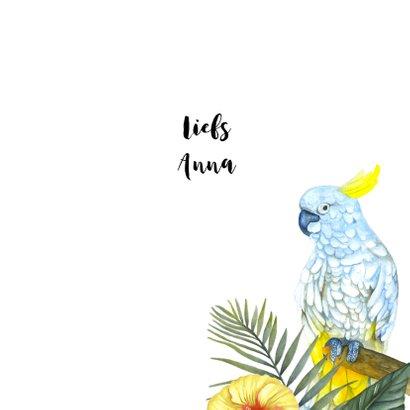 Zomaar tropische vogels 3