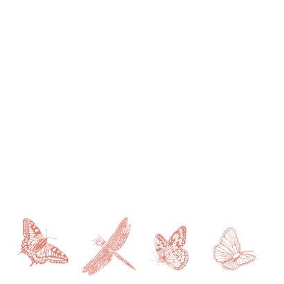 Zomaar vlinders  2