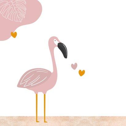 Zomaar - zomerse groetjes flamingo 2