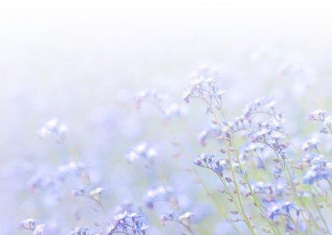 Bedankt algemeen bloemen foto 3