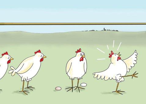 Beterschap - zieke kip op stok 3