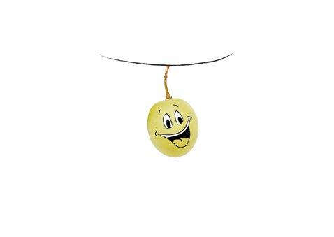 Beterschapskaart met smiley druiven, word snel beter! 2