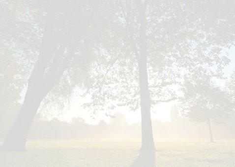 Condoleance stemmige bomen 2
