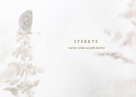 Condoleance vlinder en grassen 3