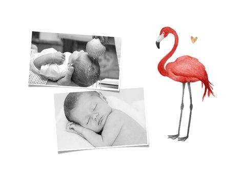 Danksagung Taufe Fotos, Flamingo und Herzen 2