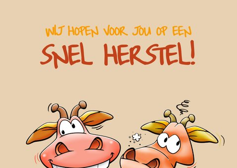 Een verrekte grappige beterschapskaart met twee giraffen 2