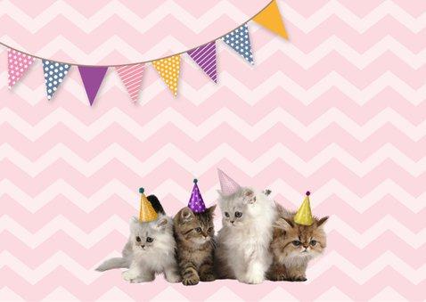 Einladung zum Kindergeburtstag mit Katzen 2