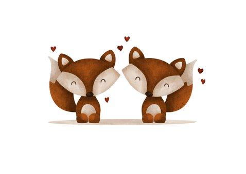 Felicitatie geboorte tweeling vosjes met hartjes lief 2