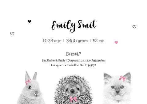 Geboortekaart - Lief baby konijntje, egeltje en kitten 3