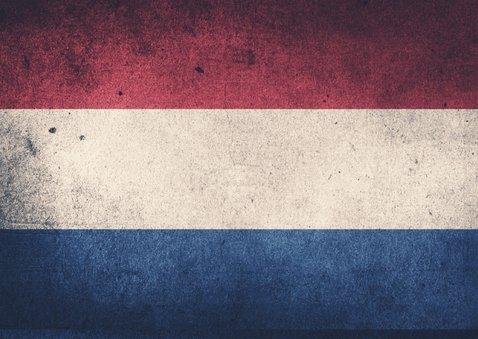 GESLAAGD Nederlandse vlag - DH 2