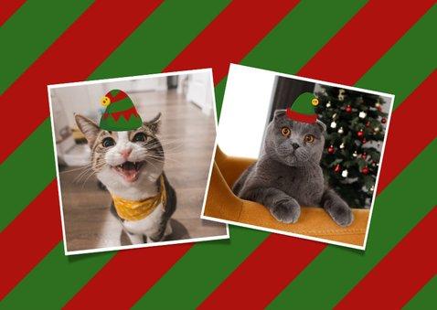 Grappige kerstkaart 2 personen +2 huisdieren in kerstpakjes 2