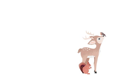 Grijsgroen geboortekaartje jongen met illustratie van dieren Achterkant