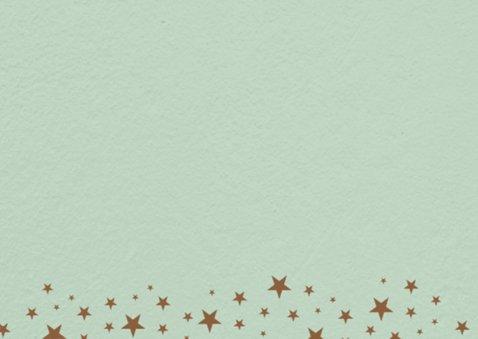 Groen met sterren polaroid -isf 2