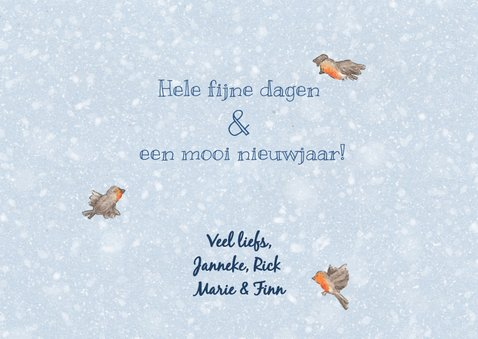 Happy holidays roodborstjes kerstkaart 3