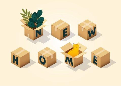 Hippe felicitatiekaart 'new home' met dozen, planten en kat 2