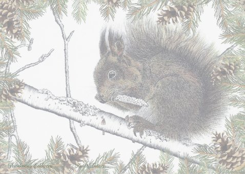 Kerstkaart Eekhoorn_goud 2